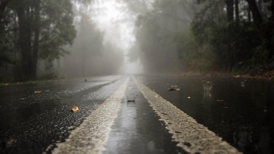 rainy road2