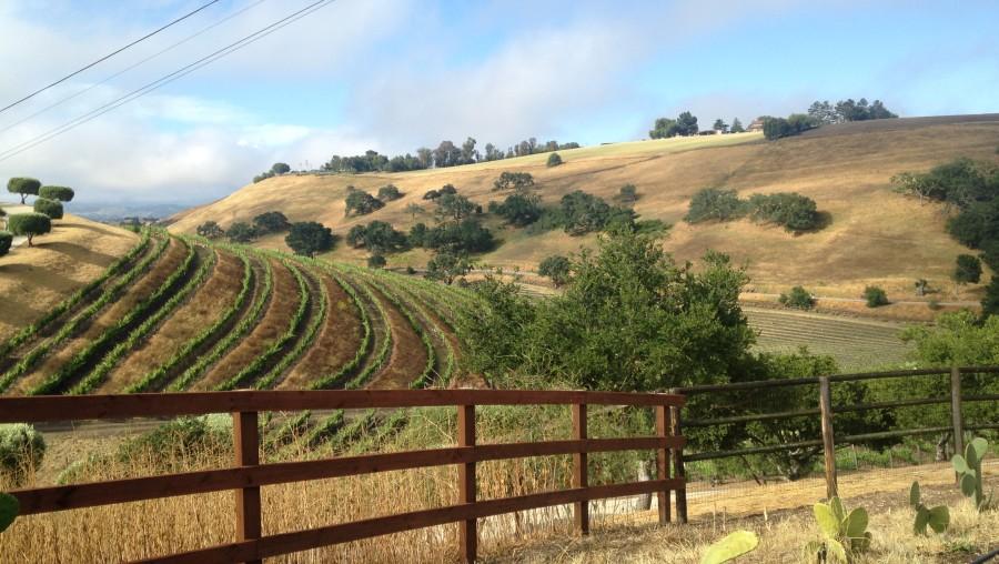 SB hills